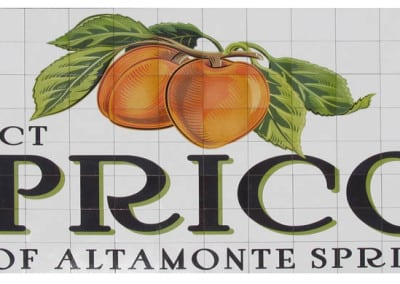 Apricot mural